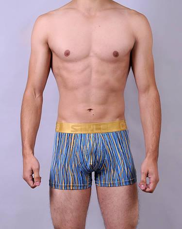 Мужские трусы - боксеры C+3  012  XL  голубые с желтым, фото 2