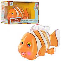 Рыбка 998 клоун18см,ездит, муз(анг) ,шевел плавн,глаз и ртом, свет, на бат-ке, в кор-ке,22-15-13см