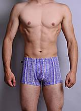 Мужские трусы - боксеры C+3  811 XL синие с голубым