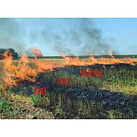 Спалювання стерні це злочин проти грунтів України