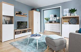 Стінка для вітальні з ДСП/МДФ (гостиная стенка) Venlo BRW