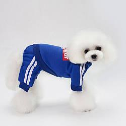 """Спортивный костюм для собак""""Super Star"""""""