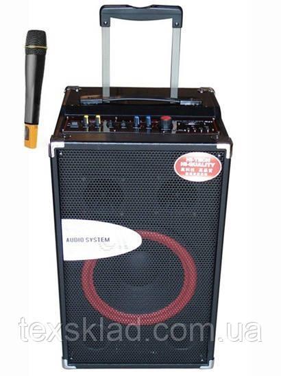 Колонки акустические AMC Qinshun 888-1