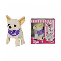 Собачка в сумочке Chi Chi Love Флиппи
