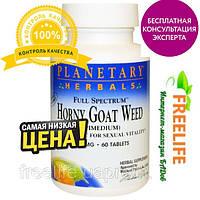 Повышение либидо у женщин Horny Goat weed из США, купить, цена, отзывы