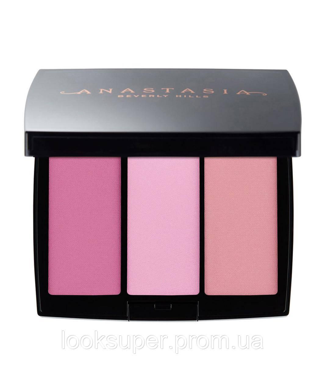 Набор румян Anastasia Beverly Hills (Pink Passion)