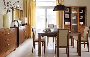 Комплект в вітальню (стенка в гостиную) Alevil BRW 1