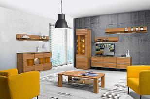 Комплект в вітальню (стенка в гостиную) Torino Szynaka 1
