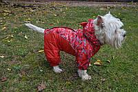 Комбинезон для собак Амур по технологии омни-хит omni-heat  энергосберегающая подкладка