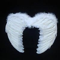 Набор Крылья Ангела Детские Гигант + нимб (15 и больше лет лет)
