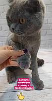 Дизайн ногтей животного (наклеивание силиконовых ногтей)