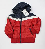 Куртка демисезонная Moncler (р-ры: 1-5)