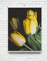 Постеры для дома, гостинной, цветы, природа, пейзажи картины с цветамы глянцевые!!