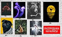 АКЦИЯ! Плакаты для кухни, постеры на подарок кошки лев собака волк животные города машины еда цветы на стену