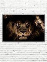 ТРЕНД! Плакаты для кухни постеры на подарок кот тигр лев собака волк животные города машины еда цветы на стену