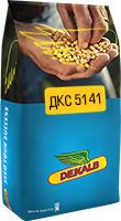 Насіння кукурудзи DKC 5141 / ДКC 5141 ФАО 430 (пос.ед.) Стандарт