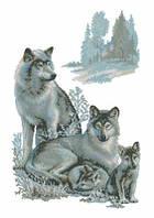 Семья волков   Набор для вышивки крестом канва 14ст