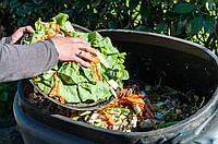 Что мы знаем о компостировании?