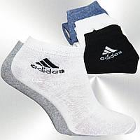 Носки adidas оптом. SZ25200009