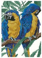Пара попугаев   Набор для вышивки крестом канва 14ст