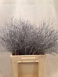 Ветви Серебро