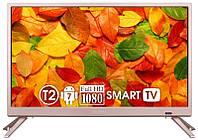 Телевізор Nomi 22FTS11 Titanium