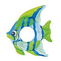 Надувной круг Рыбка Intex 59219 2 цвета, фото 1
