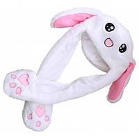 Шляпы Кролики Головные уборы для женщин - Многоцветный 1TopShop