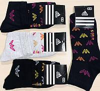Носки демисезонные хлопок Adidas Турция размер 36-40 ассорти