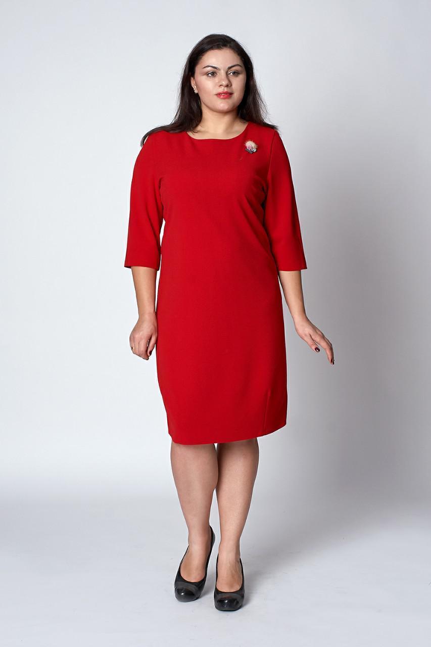 5d94e7971465 Женское нежное платье из крепа, 48,50,52: продажа, цена в Хмельницком.  платья женские ...