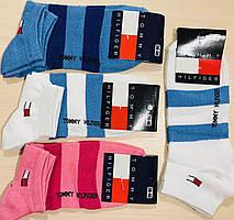 Носки демисезонные укороченные хлопок Tommy Hilfiger Турция размер 36-40
