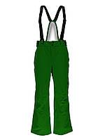 Мужские горнолыжные штаны Spyder Bormio Ski Pant 783230