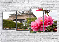 Модульная картина, Каркина на холсте, Постер, Фотокартина, Картина, Фотопечать   90х60 см.