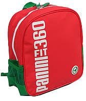 Рюкзак детский Panini FIT 360 красный 559-15 6 л