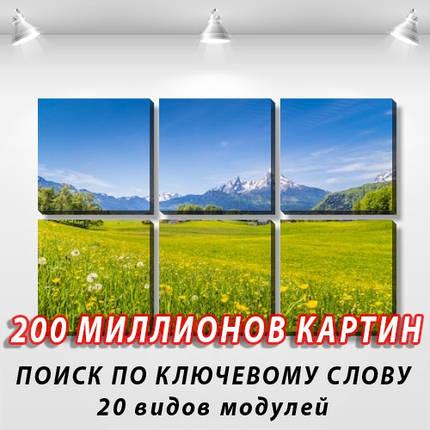 Модульная картина, холст, Горы, реки, 62x95см.  (30x30-6), фото 2