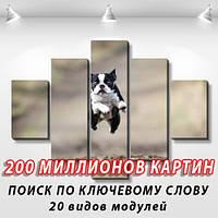 Модульная картина, холст, Животные, 90x110см.  (30x20-2/55x20-2/90x20)