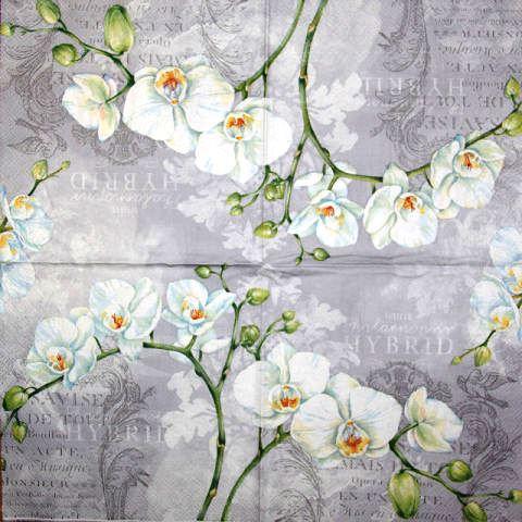 Декупажная салфетка Белые орхидеи 1306