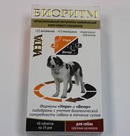 Биоритм для собак крупных пород 48 таблеток Веда *