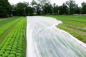 Агроволокно «Agreen»-30 (4.2х100 м) рулон, оригінал, фото 2