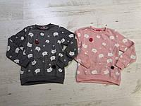 Кофта утепленная для девочек оптом, Crossfire, 134-164 см,  № CS-2020, фото 1