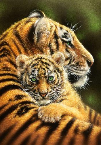 "Пазлы ""Тигры"", 500 элементов (тигр, тигрята, природа, животные)"