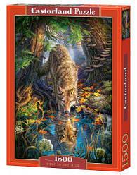 """Пазлы """"Волк в дремучем лесу"""", 1500 эл"""
