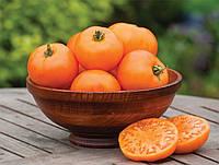 Томат Апельсиновый Веллингтон, фото 1