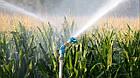 Спринклерні системи поливу для сільського господарства, системи поливу, дощовики, полив поля, модель S 60, фото 3