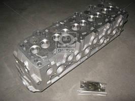 Головка блока цилиндров VAG 2,4D T4 90-03 AAB(пр-во SM), 485013-1