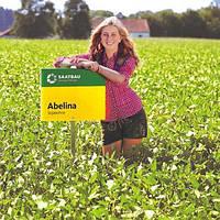 СОРТ СОЇ | 100 ДНІВ АБЕЛІНА (ABELINA) Базове