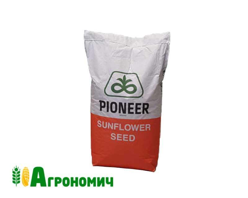 Гібрид соняшника P62LL109 | П62ЛЛ0109 Круїзер | DuPont Pioneer