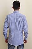 Приталенная рубашка  в мелкую синюю клетку, фото 2