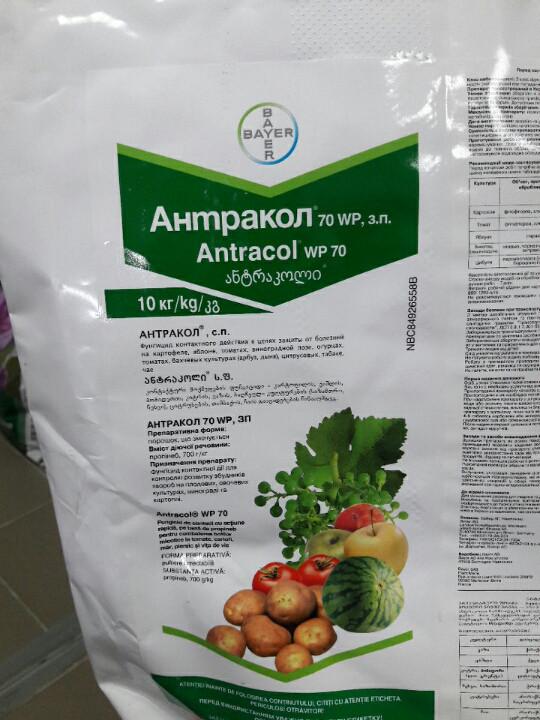 Фунгіцид Антракол®, з.п - 10 кг | Bayer