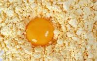 Яєчний порошок, сухий яєчний порошок